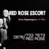 Red Rose Escort Völs Logo